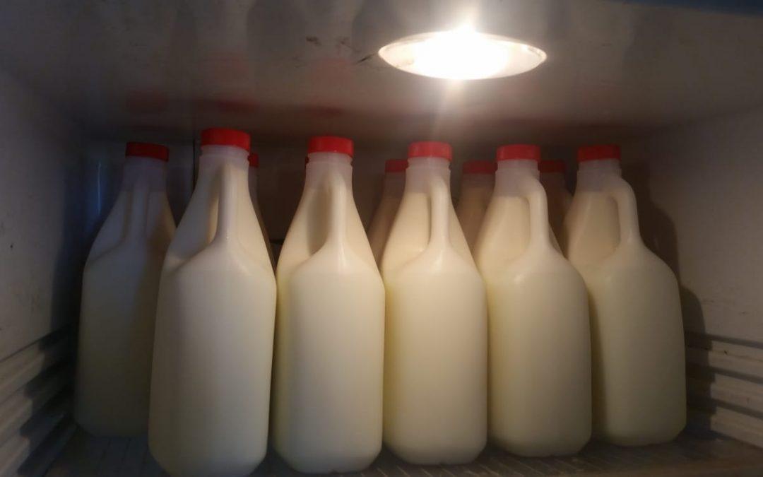 Het is zover. De melk kan de winkel in.